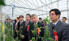 VnExpress ra mắt chuyên mục Nông nghiệp sạch
