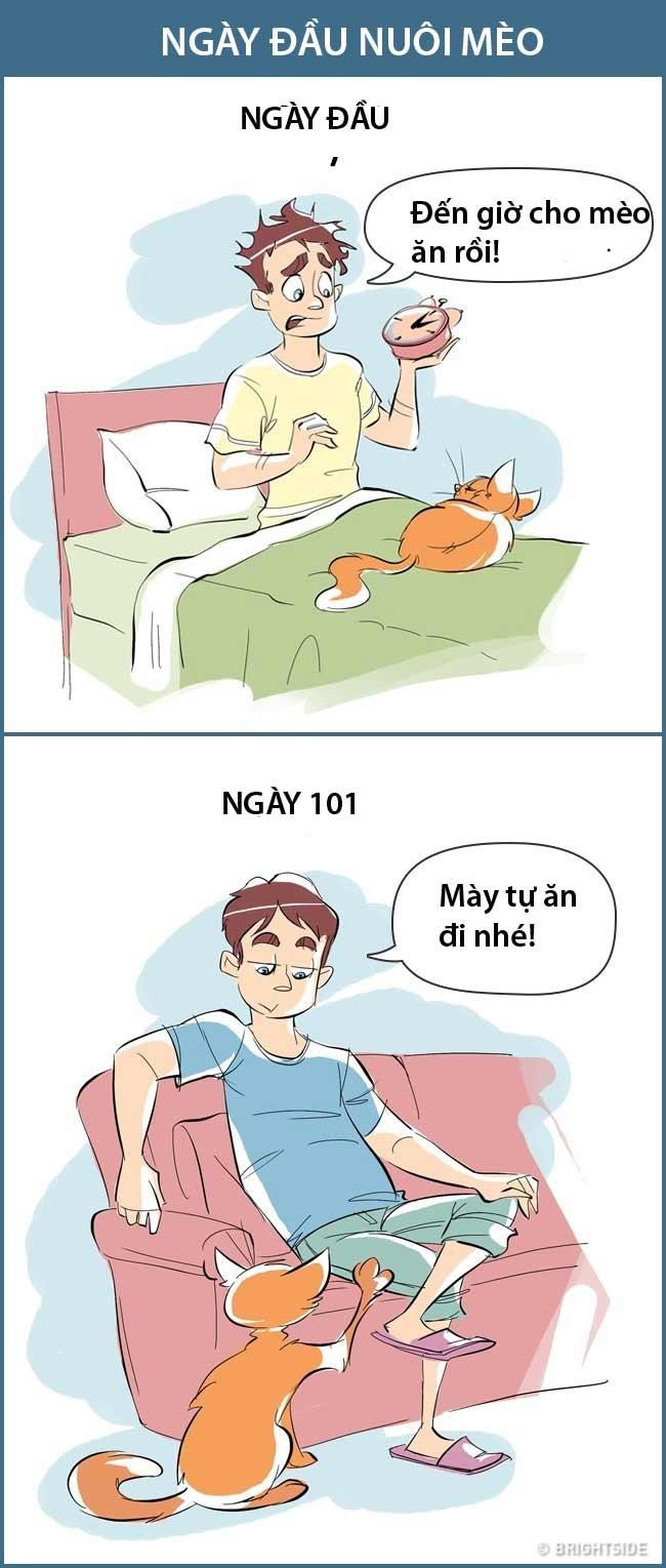 """Mới có mèo bầu bạn thì hứng thú. Giờ cho mèo ăn cũng phải hẹn đồng hồ. Vài ngày sau """"mày tự lo cho mình đi nhé""""!."""