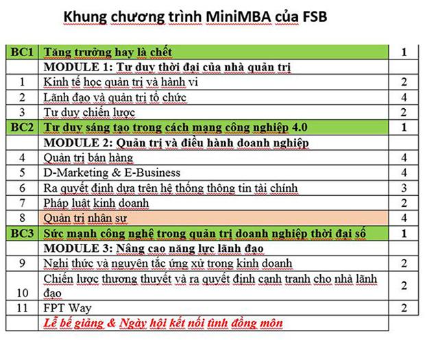 Khung-chuong-trinh-MiniMBA-FSB-4918-1501