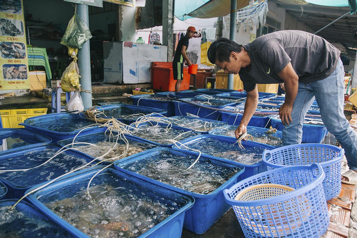 Hải sản ở Nam Du không chỉ đa dạng về chủng loại với những loại cá đảm bảo khó kiếm được ở đất liền như: cá xương xanh, cá bớp, cá nhám,... mà giá cả cũng rất rẻ. Ngoài hải sản thì các loại khô một nắng và đá me là đặc sản nơi đây.
