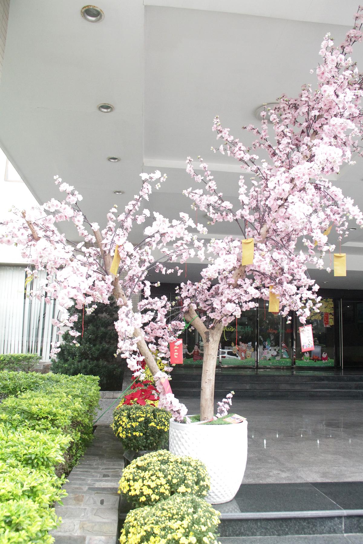 Sảnh tòa nhà Massda cũng được trang trí rực rỡ sắc xuân, tạo cảm giác ấm áp và an lành cho CBNV.
