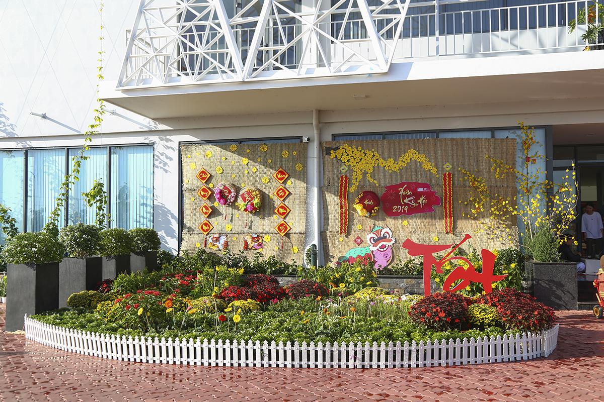 Không khí xuân tràn ngập ngay từ cổng vào khu Hovilo cho đển khoảng sân trước với những luống hoa tươi và những nhành mai vàng tượng trưng cho ngày Tết phương Nam.