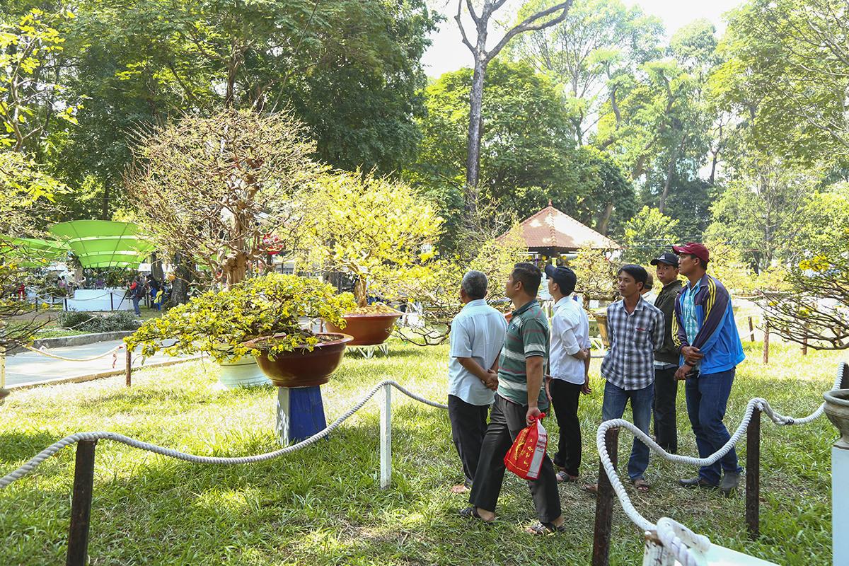 Đặc biệt, nhiều nghệ nhân đến từ miền Tây mang đến hội hoa Xuân những cây mai vàng cổ cả trăm năm tuổi, cây mai tạo dáng bonsai để trưng bày cho du khách thưởng lãm.
