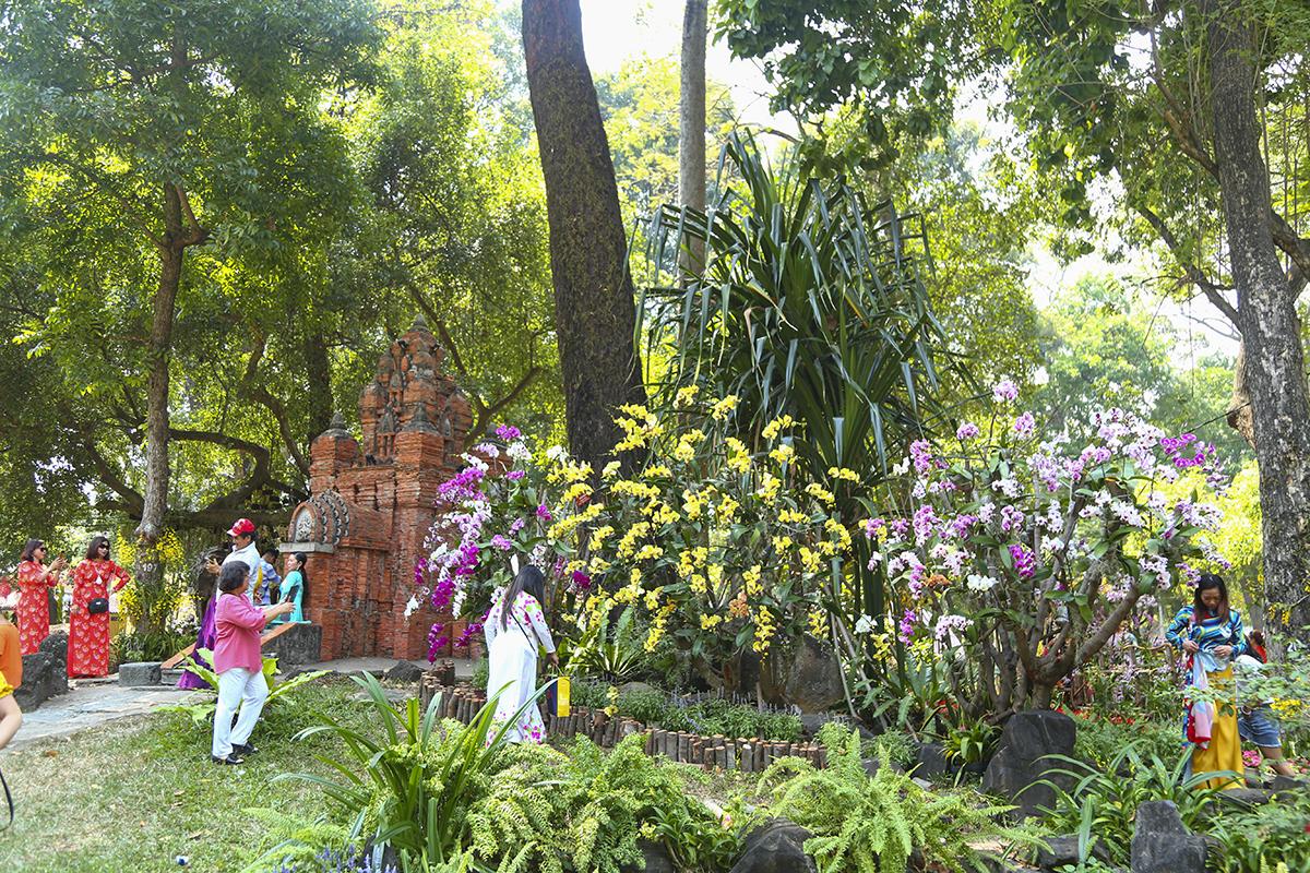 """Nhiều loài hoa quý từ Đà Lạt cũng """"đổ bộ"""" xuống Hội Hoa Xuân TP như: mai xanh, hồng xanh,… Bên cạnh đó, bộ sưu tập lan rừng với nhiều loài như: ngọc điểm, thủy tiên, long tu, dã hạc, hạc đỉnh… sẽ đưa du khách về với vẻ đẹp hoang sơ của núi rừng."""