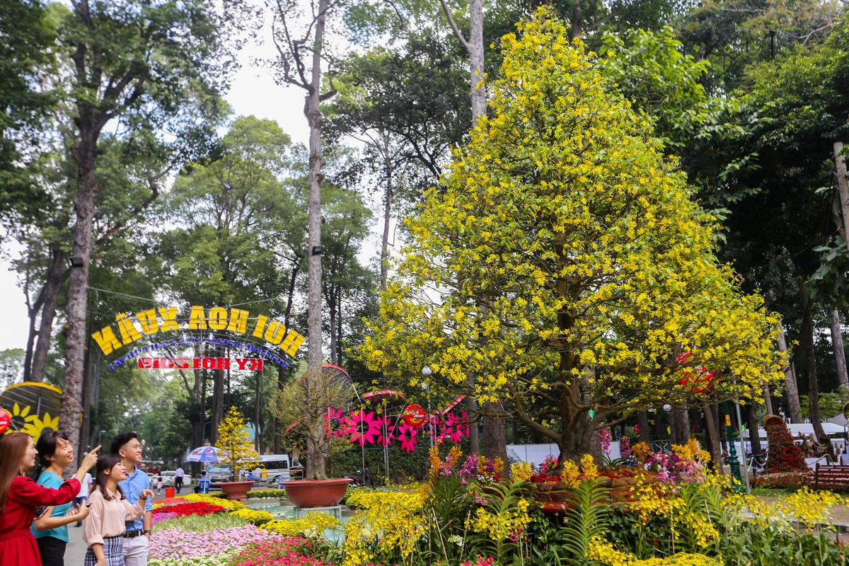 Nếu đi vào từ cổng Trương Định sẽ ấn tượng ngay với cây mai có tuổi đời gần 100 năm, cao 6 m được nghệ nhân Vĩnh Long đưa lên với định giá gần 2 tỷ đồng và lần đầu xuất hiện ở Hội Hoa xuân Tao Đàn.