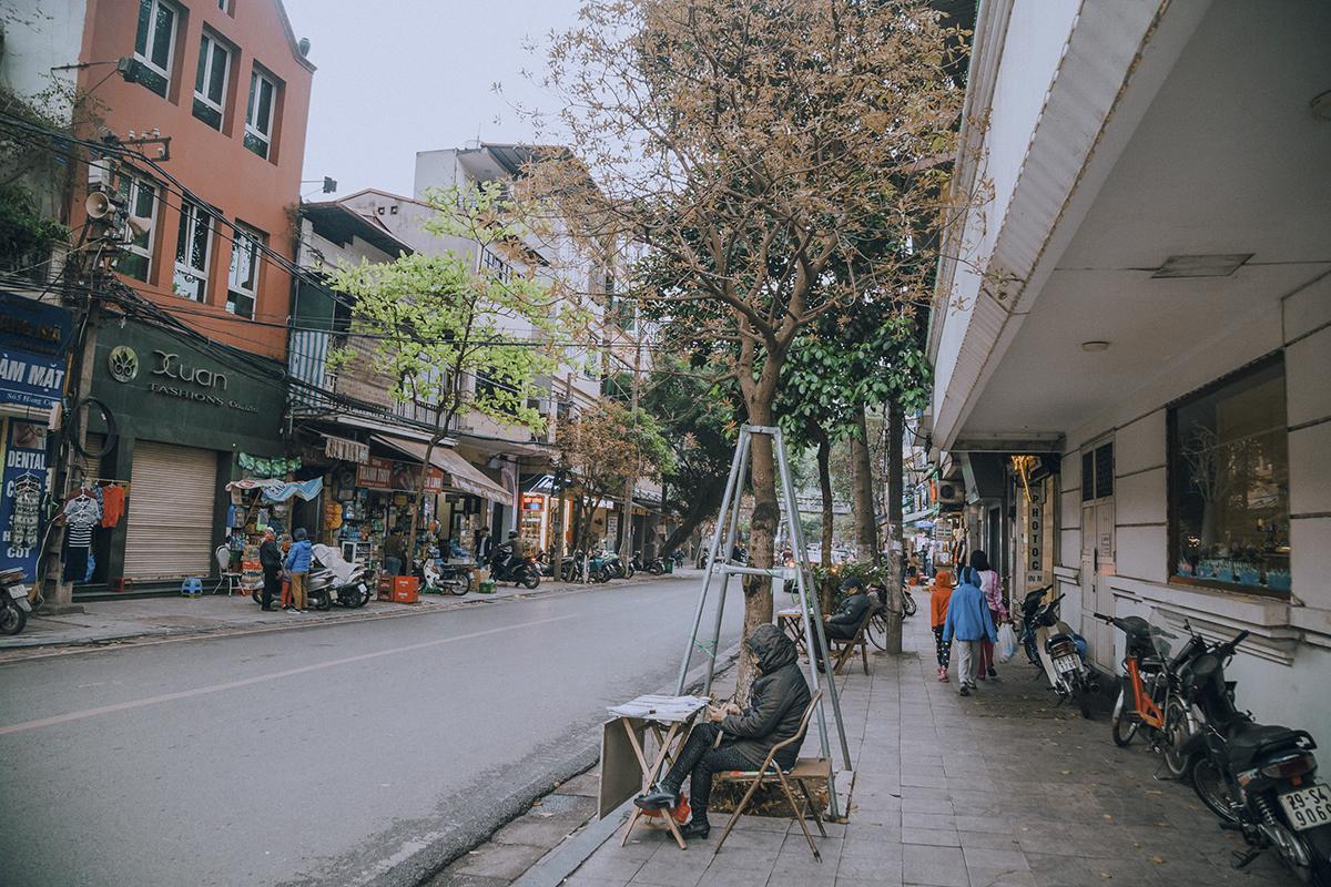 Trên các tuyến phố cổ như Hàng Cót, những tán lá non đã xuất hiện thay thế những chiếc lá vàng vừa lìa cành.