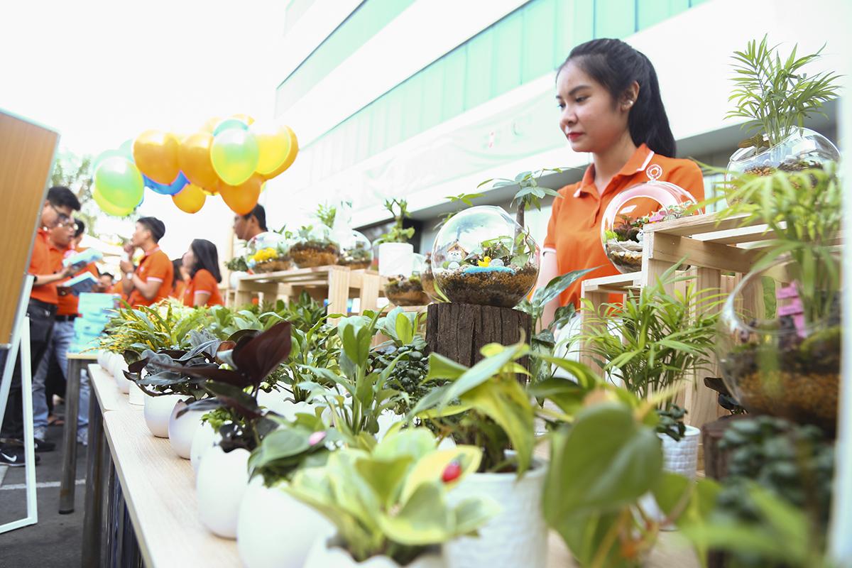 """Các chậu bonsai nhỏ cũng được người nhà """"Cáo"""" bày bán nhằm gây quỹ ủng hộ chương trình """"Hướng về biên giới"""". Bên cạnh việc quyên quốc kỳ, BTC Ngày người FPT Vì cộng đồng còn tặng và lắp đặt 1.000 góc học tập cho trẻ em nghèo tại 25 tỉnh biên giới."""