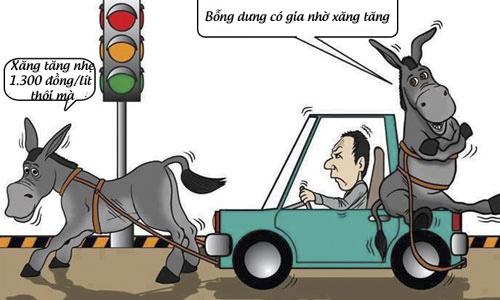 Đi ô tô bằng sức kéo của lừa ngựa có thể là giải pháp hữu hiệu để tiết kiệm xăng.