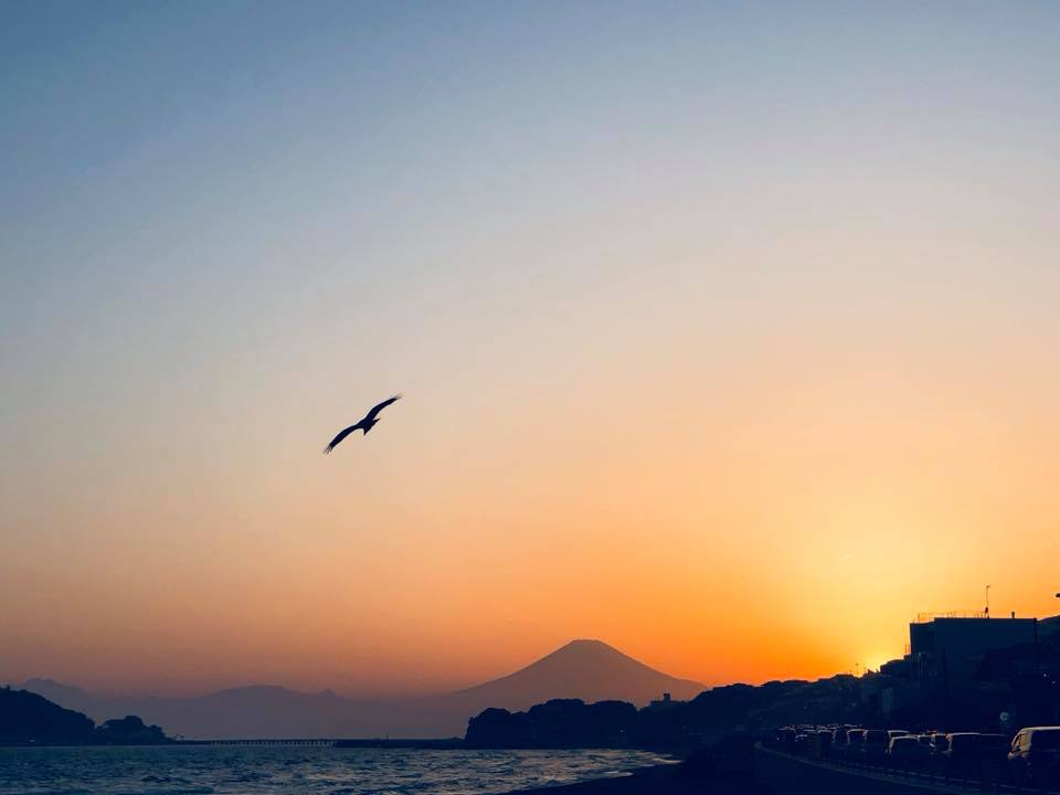 Enoshima là hòn đảo nối với tỉnh Kanagawa. Gần Enoshima-jinja Shrine có ngọn hải đăng, là địa điểm du lịch vào lúc hoàng hôn hay những ngày thời tiết đẹp có thể thấy được toàn bộ núi Phú Sĩ. Tuy nhiên, vào dịp mùa hè du khách rất đông, vé vào cửa cho mỗi người khoảng 500 yên.