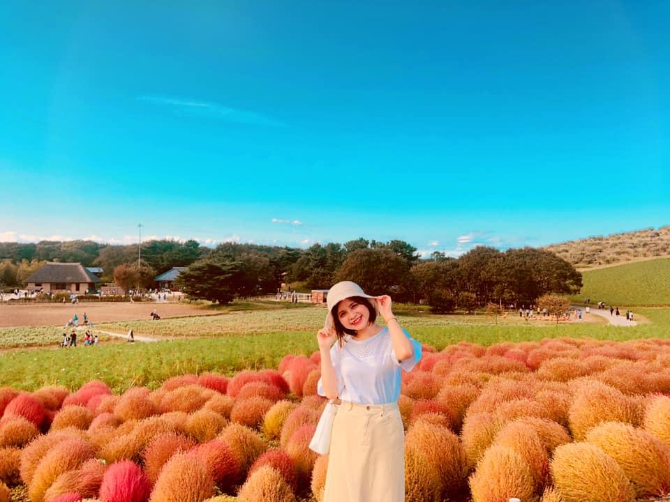 Công viên quốc doanh Hitachi Kaihin thuộc tỉnh Ibaraki của Nhật Bản, luôn là điểm đến hấp dẫn với du khách trong và ngoài nước. Nếu người FPT đến đây vào mùa thu, bạn sẽ không thể kìm lòng trước cảnh sắc rực đỏ của đồi Kokia.
