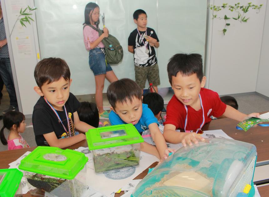 Các bé chăm chú theo dõi con vật di chuyển. Sự say mê và hứng khởi của các FPT Japan Small đã tạo nên không khí sôi động và náo nhiệt trong sự kiện.