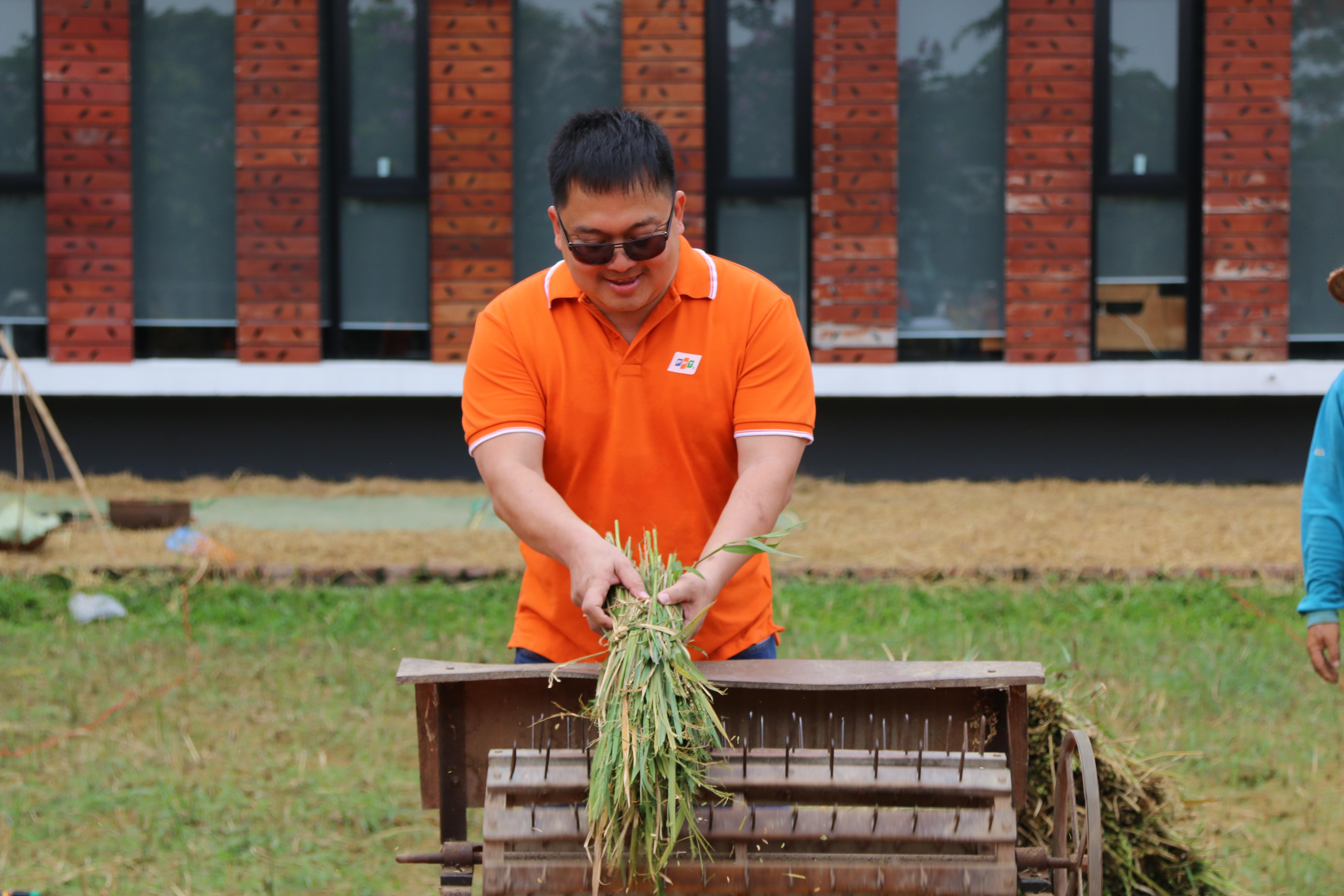 Chủ tịch nhà Phần mềm cũng trải nghiệm tuốt lúa để nhớ lại một thời tuổi thơ.