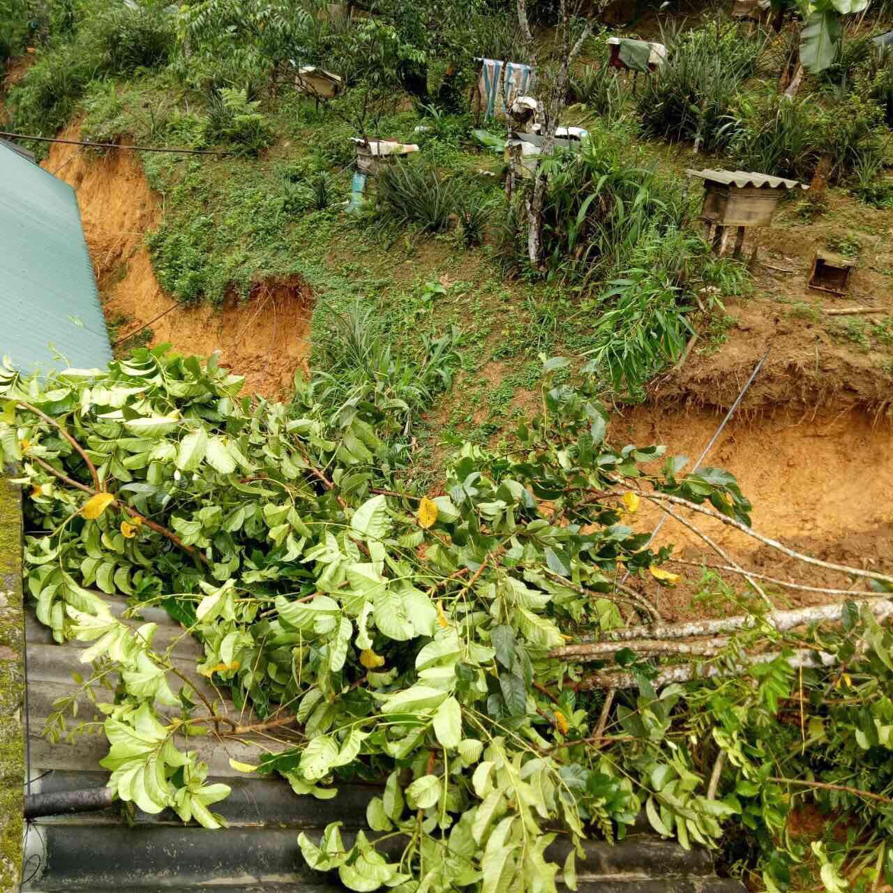 Do ảnh hưởng của bùn đất từ trên núi tràn xuống, nhà hai CBNV bị chìm vào trong bùn đất. Cụ thể, đó là nhà anh Sầm Văn Ba - kỹ thuật viên điều hành TIN và anh Lục Văn Quý - nhân viên TIN hạ tầng. Trong đó, nhà anh Ba đã được mọi người hỗ trợ, giúp đỡ nên không có thiệt hại nhiều. Nhà anh Quý bị bùn đất lấp 1/2 nhà, tường đất cấp 4 bị sâp nghiêm trọng. Tình trạng này phải đợi đến ngày mai mới có thể xử lý, vì phải đợi cho bùn đất khô hơn.