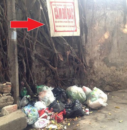 Dù cắm biển 'Cấm đổ rác' nhưng rác vẫn rất nhiều.