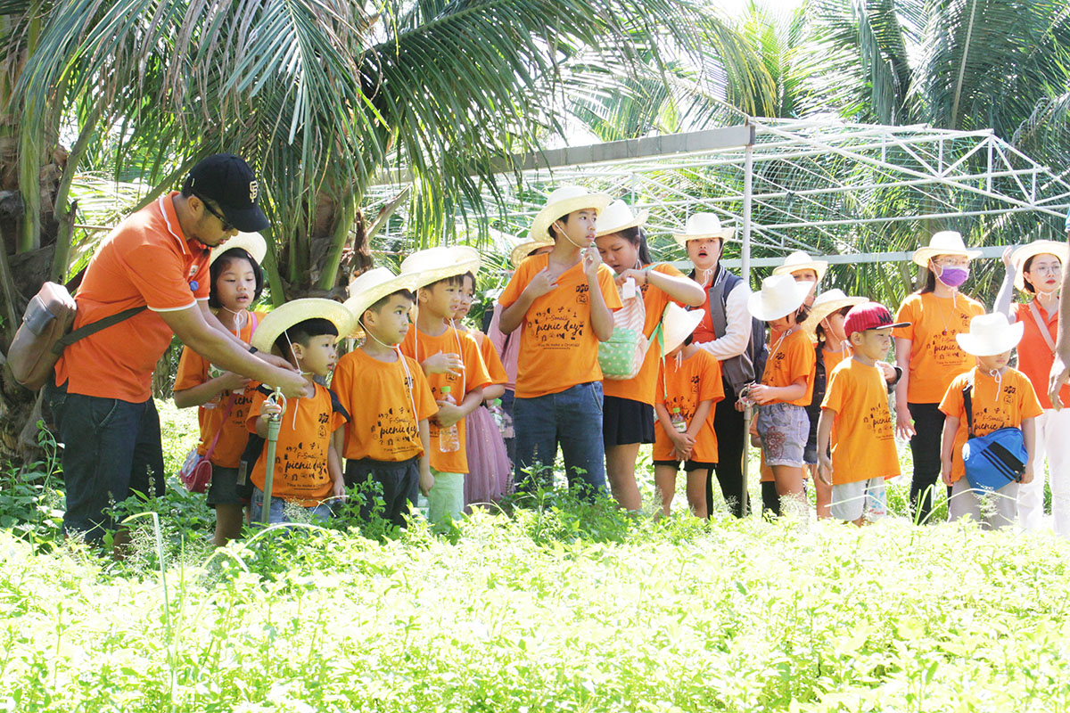 """Một nhóm FPT Small đứng xa quan sát và tranh thủ tham quan các luống rau đã vào mùa thu hoạch của người nông dân. """"Cháu rất thích trồng rau. Hình ảnh bác nông dân cũng thân thiện"""", Đặng Vân Nhi (7 tuổi), chia sẻ. Cũng trong tháng 7, FPT đã tổ chức trại hè nội trú 3 ngày 2 đêm cho các FPT Small tại Hà Nội và TP HCM với nhiều hoạt động bổ ích, thú vị. Với chủ đề """"Global Passport"""" (hộ chiếu toàn cầu), trại hè nội trú được tổ chức cho FPT Small từ 11-15 tuổi, con của các CBNV đã ký hợp đồng tính đến ngày 15/5/2019. Chương trình do Công đoàn FPT phối hợp cùng Golden Path Academics (GPA) tổ chức. Trại hè nội trú khu vực Hà Nội diễn ra từ ngày 8-10/7 tại khu du lịch Làng Sỏi, Lạc Thủy, Hòa Bình. Sự kiện tương tự ở TP HCM diễn ra từ 12-14/7 tại khu nghỉ dưỡng Phương Đông, Nguyễn Chí Thanh, Vũng Tàu."""