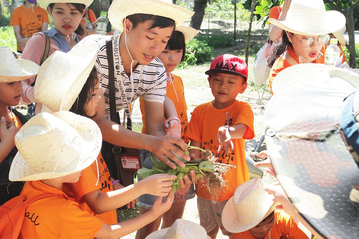 Sau khi thực các công đoạn cần thiết, FPT Small bắt đầu trồng rau. Mỗi bé tranh thủ trải nghiệm và cố gắng trồng một cách đẹp nhất.