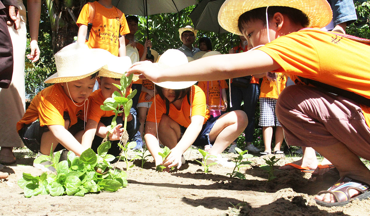 """Bé Trần Mỹ Minh Thư (10 tuổi) cho biết trồng được khá nhiều rau. Nắng nóng nhưng ai cũng muốn được trải nghiệm. """"Cháu rất thích. Hy vọng được nhiều lần trải nghiệm như này"""", bé nói."""