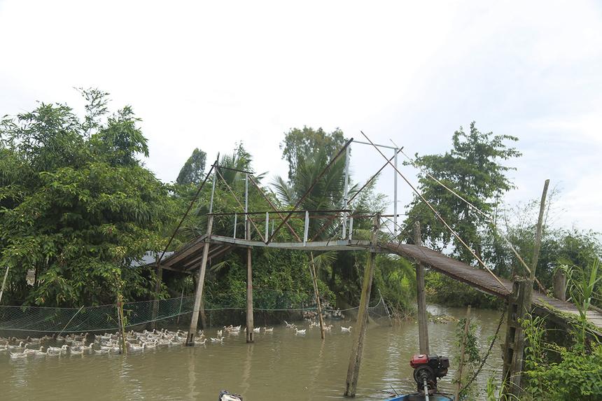 Sau khi quan sát tình hình xuống cấp những cây cầu kề bên cầu Kênh Đào vừa được khởi công, chính quyền địa phương xã Trung Thạnh cũng đề nghị được hỗ trợ để có thể xây dựng thêm cây cầu Hy Vọng tiếp theo.