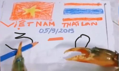 'Cua thần' dự đoán Việt Nam thắng Thái Lan 3-0