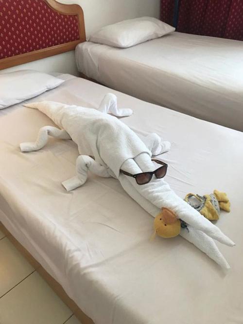 Một chú cá sấu được tạo bằng những chiếc khăn.