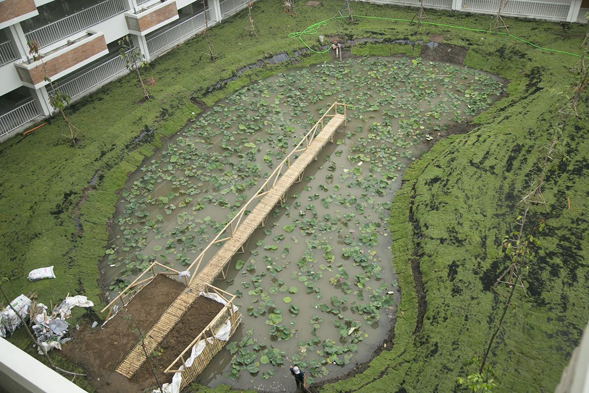 """Hồ sen mang tên """"Hồ Ông Tùng"""" được xây dựng theo hình lưỡi trai với chiếc cầu bằng tre sẽ là địa điểm sống ảo lý tưởng của các sinh viên."""