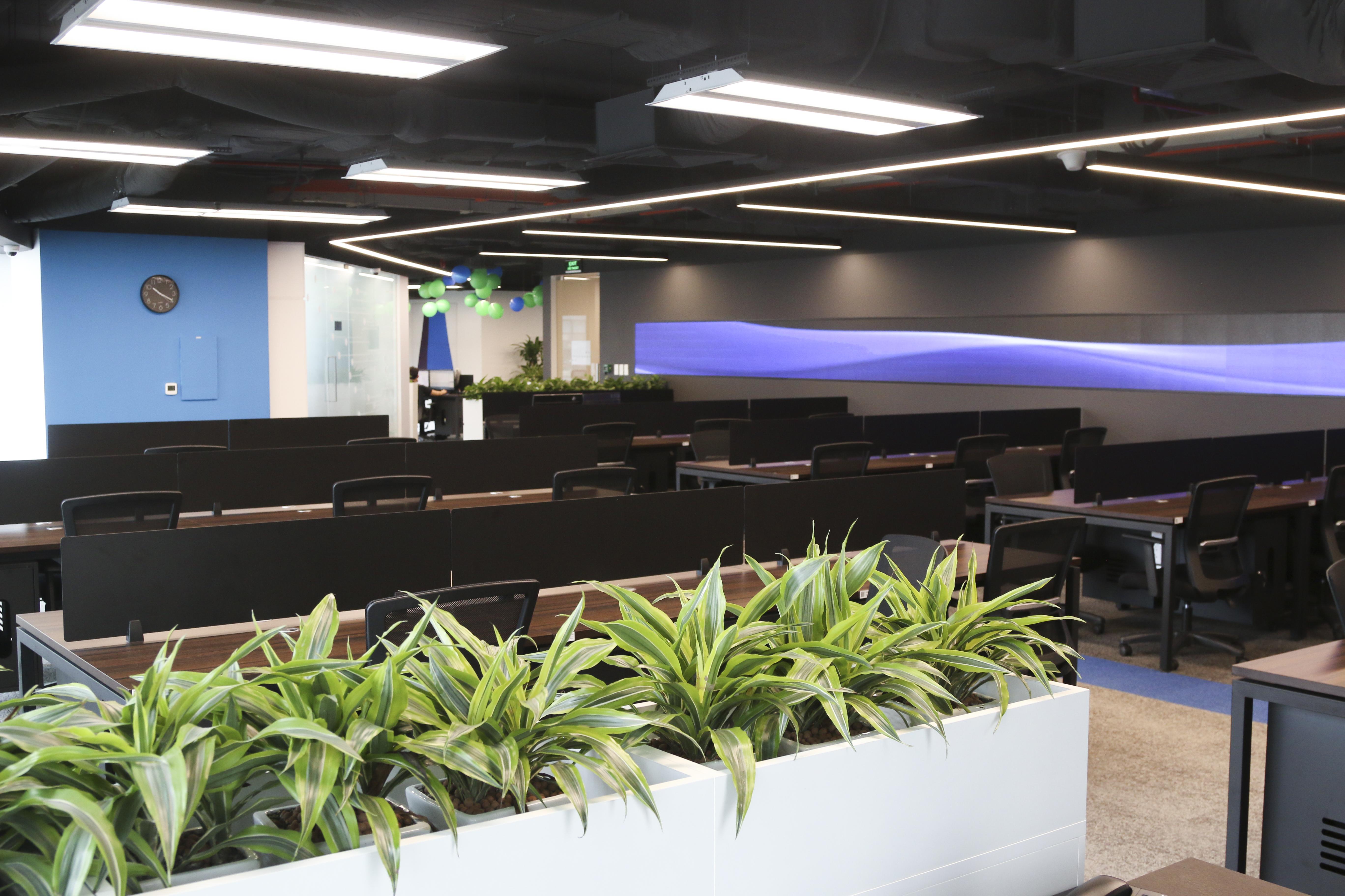 Không gian làm việc xanh được phủ khắp văn phòng.