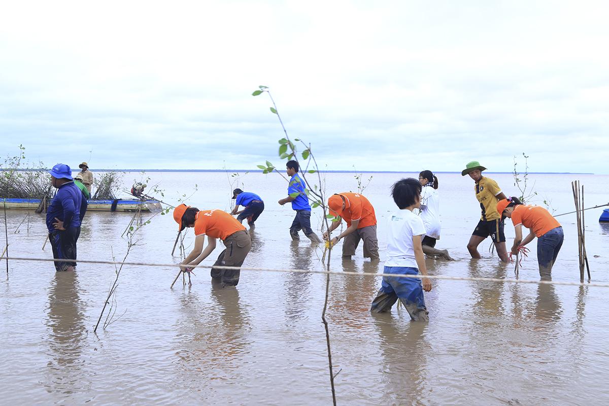 Huyện Cù Lao Dung là một trong ba huyện nằm dọc tuyến sông Hậu, chịu thiệt hại nặng nề của biến đối khi hậu. Mỗi khi triều cường dâng cao, song vỗ vào bờ gây xói lở bờ song, ngày càng lấn sâu vào đất liền và nhà của người dân sinh sống ven song.
