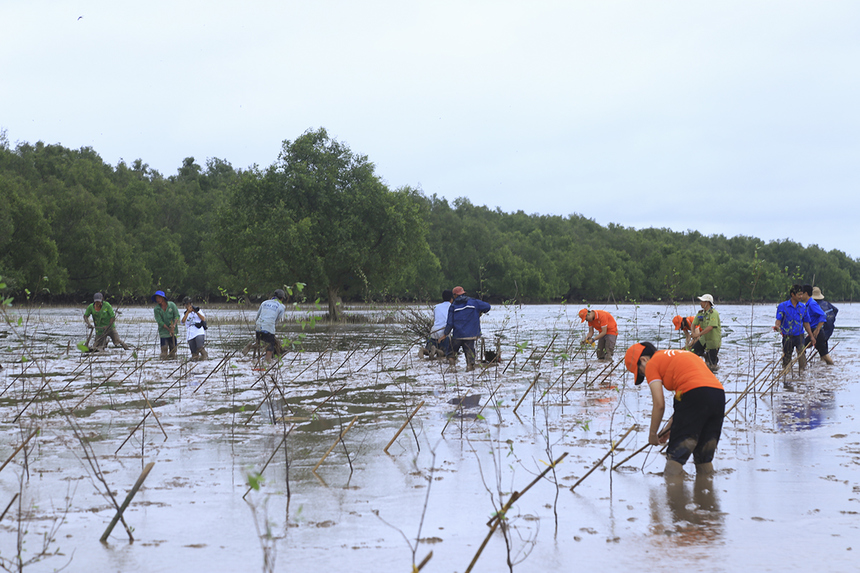 Từ ngày 26/7, chiến dịch Run For Green được khởi động tại khuôn viên F-Ville (Hòa Lạc, Hà Nội) với sự tham gia của gần 1.000 VĐV. Kể từ đó, CBNV FPT Software đã liên tục tổ chức các buổi chạy khắp Việt Nam và trên thế giới. Chiến dịch không chỉ rèn luyện sức khỏe cho mỗi CBNV mà còn nâng cao ý thức bảo vệ môi trường qua việc đóng góp cây xanh.