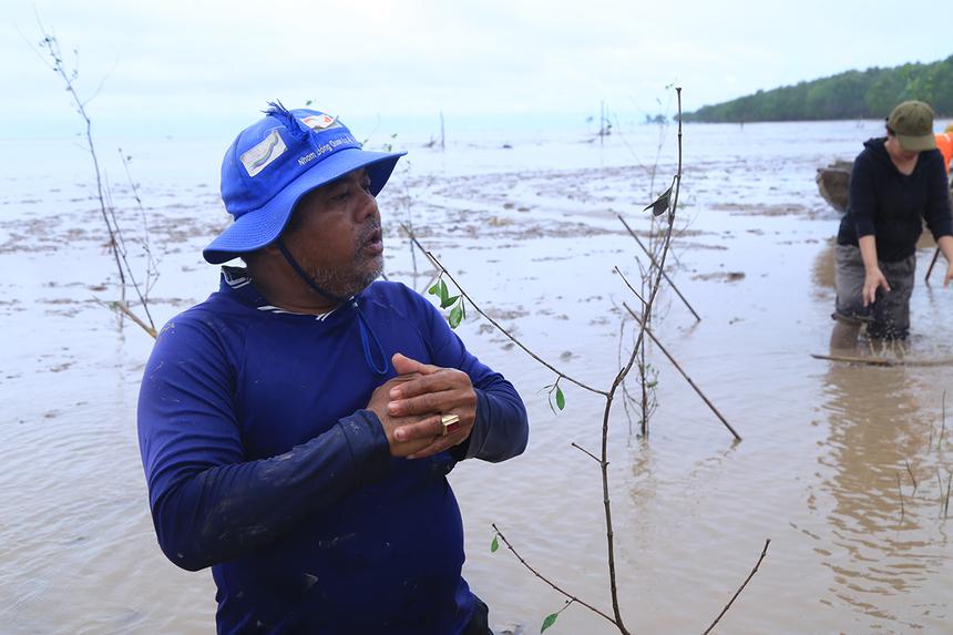 Chú Thạch Sơn, người dân địa phương chuyên trồng bần, hướng dẫn người nhà Phần mềm cách trồng.