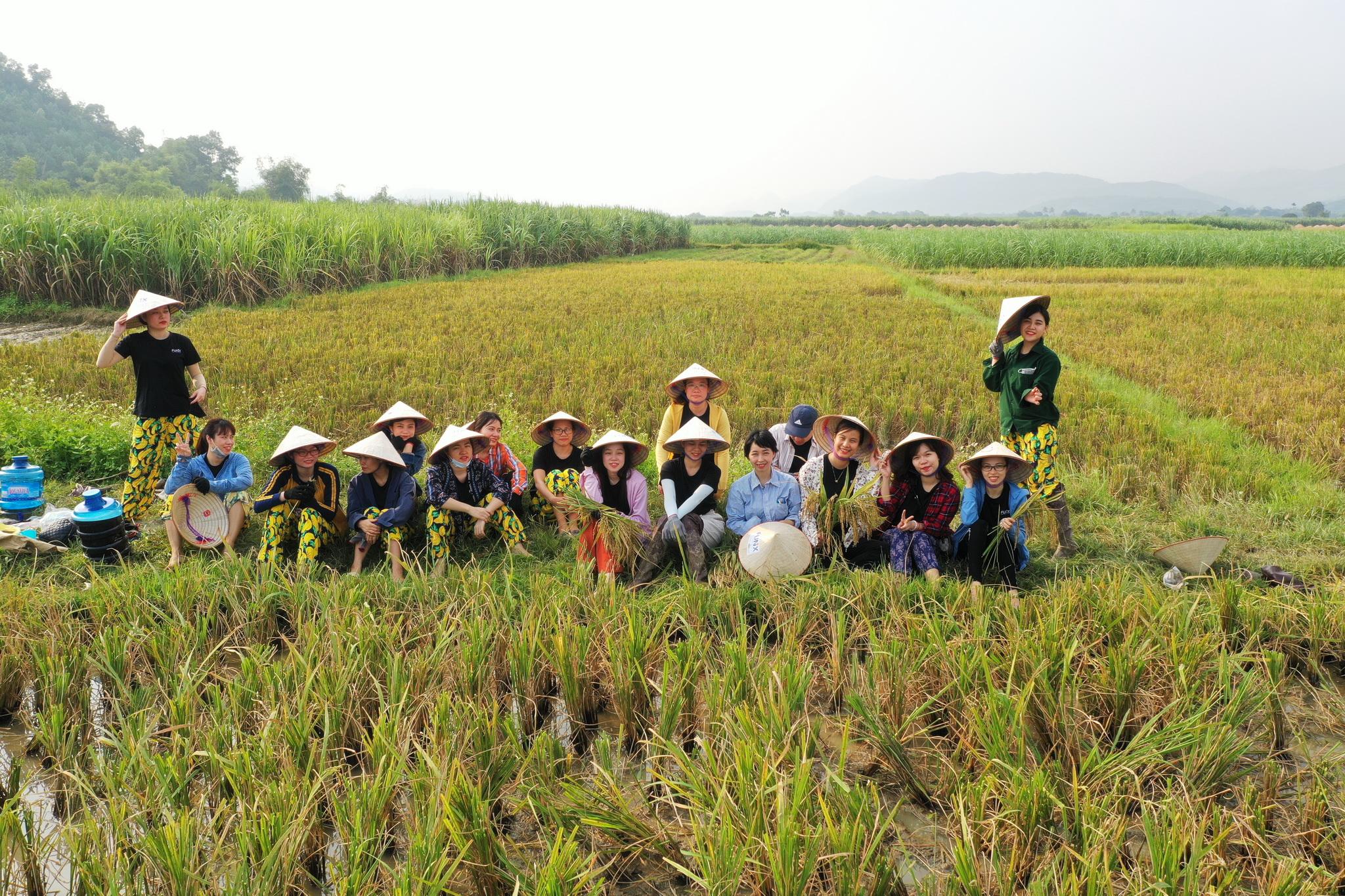 Cùng kỳ năm ngoái, FUNiX có hoạt động mừng sinh nhật tuổi thứ 3 tại Quảng Ninh với nhiều hoạt động teambuilding thú vị.