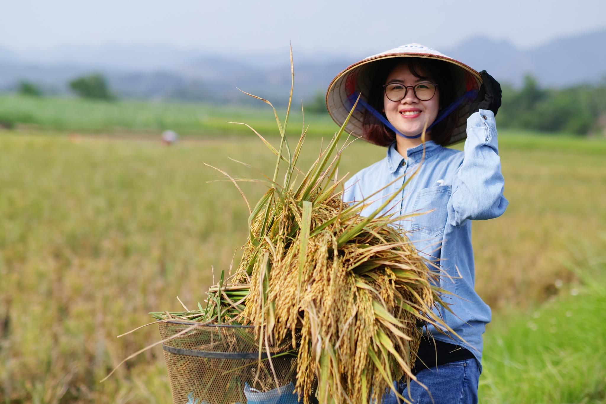 """Chị Nguyễn Kim Quỳnh, cán bộ Hành chính của FUNiX, xúc động: """"Cảm giác được hít hà hương lúa trong không khí trong lành rất thích. Từ hoạt động lần này, mỗi người nhìn thấy được vẻ đẹp của lao động. Tôi hy vọng trong tuổi mới, FUNiX sẽ thành công hơn nữa""""."""