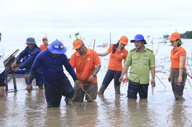Người FPT đã trồng 2.000 cây Bần tại Sóc Trăng. Ảnh: Vũ Trần