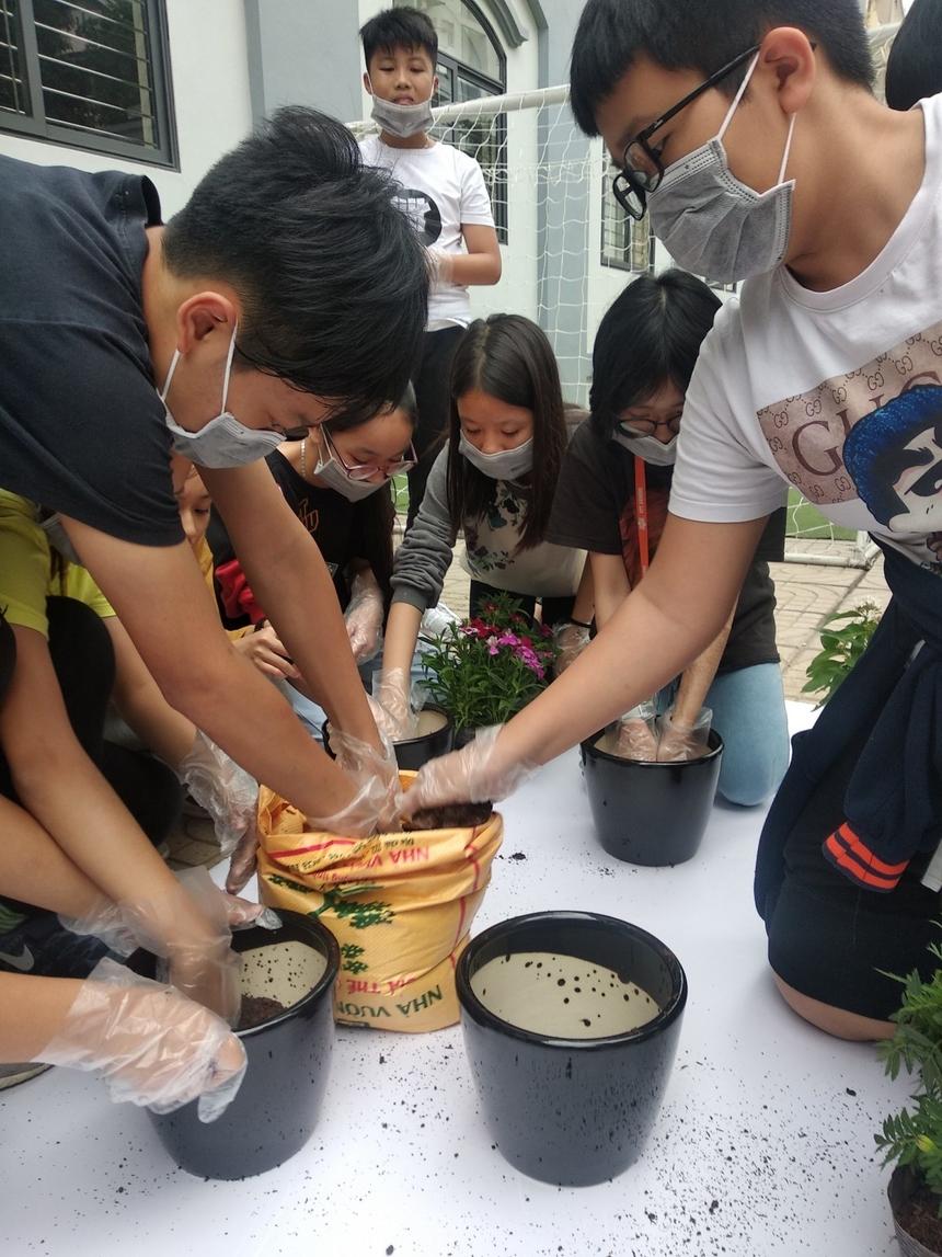 Sau khi hoàn thiện lắp ráp mạch vào khung giá đỡ chậu cây, mỗi nhóm học sinh tiến hành trồng cây vào chậu hoa của nhóm mình.