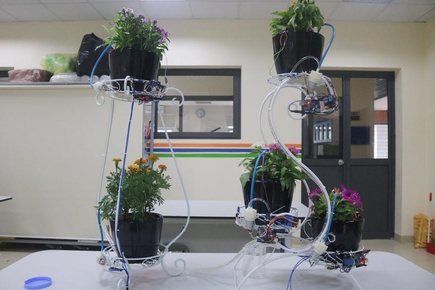Sau khi hoàn thành, các chậu cây sẽ được trưng bày tại hành lang lớp học.