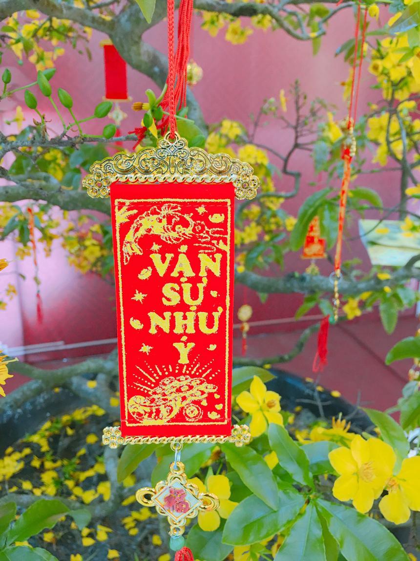 Campus ĐH FPT tại quận Ngũ Hành Sơn, TP Đà Nẵng cũng khoe sắc và tỏa hương. Chậu mai lớn được dùng để trang trí văn phòng tuyển sinh.
