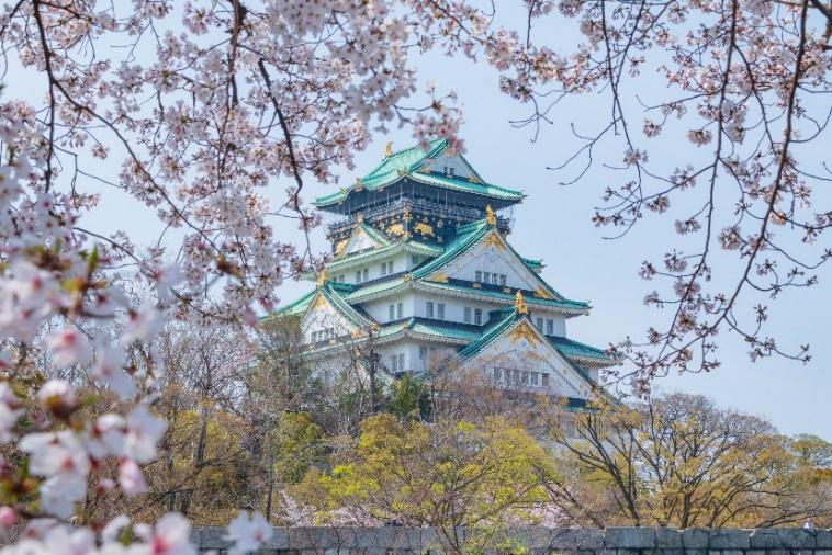 Thành Osaka Nhật Bản - Những đợt hoa trong sáng tinh khiết cuối cùng của mùa xuân. Ảnh: Vũ Văn Lâm
