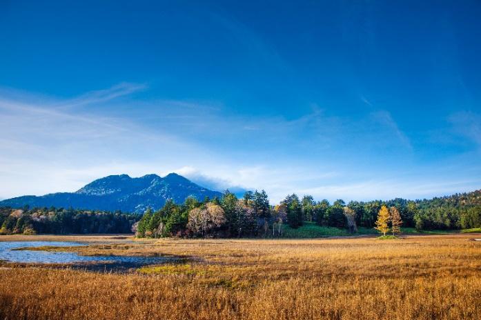 Buổi sáng ở công viên quốc gia Oze, tỉnh Gunma với thiên nhiên hùng vĩ, khoáng đạt và không khí vô cùng trong lành, dễ chịu. Bụi mịn không có trong từ điển ở đây nhé! Ảnh: Đặng Phước Hưng