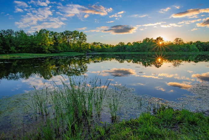 Hồ nước thuộc khu bảo tồn Weldon Spring, Missouri Mỹ, đẹp như một bức họa của Monet ngoài đời thực. Ảnh: Huỳnh Vũ Đông Nguyên