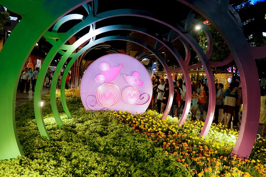 Nhiều mô hình chuột nhiều màu sắc tại đường hoa.