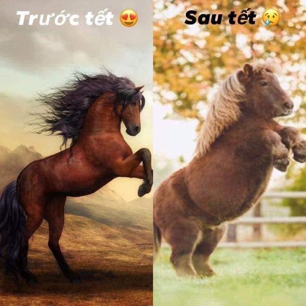 Trước Tết và sau Tết là hai hình ảnh trái ngược nhau...