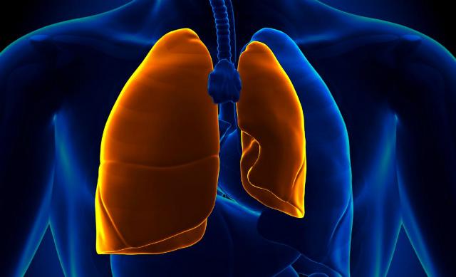 Các bệnh về phổi có thể được chẩn đoán sớm bằng AI. Ảnh: Wellness Destination India