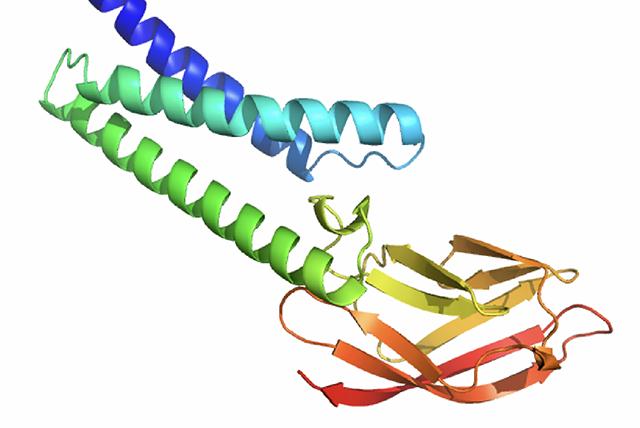 deepmind-coronavirus-protein-i-7491-5123