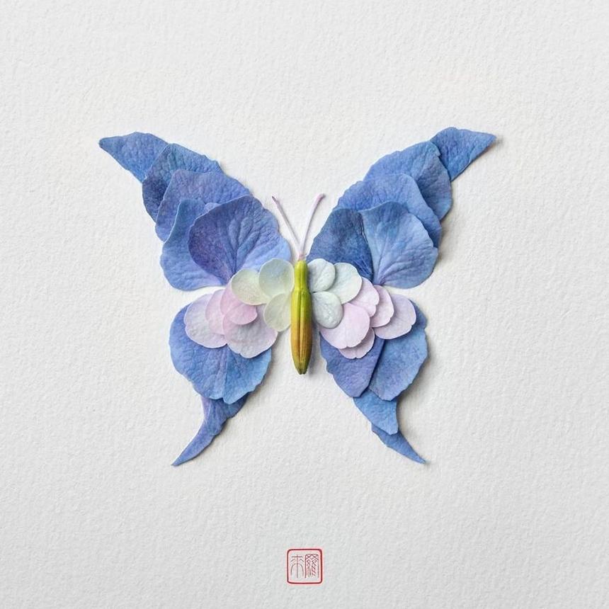 """Sê-ri nghệ thuật của anh có sự xuất hiện của những con bướm, bọ cánh cứng, nhện và thậm chí cả những con cú được chế tác từ những bông hoa tươi sáng cùng phụ kiện đi kèm. Inoue sắp xếp chúng thành các tác phẩm, sau đó chụp trên nền trắng khiến chúng trông giống như hộp trưng bày thường thấy tại những bảo tàng lịch sử tự nhiên. Khi được hỏi mất bao lâu để thực hiện một tác phẩm điêu khắc, người nghệ sĩ nói: """"Có thể mất 20 phút, cũng có thể mất vài tuần, phụ thuộc vào sự phức tạp của mỗi tác phẩm. Để có nhiều dự án 3D hơn, tôi cần tạo lõi xốp để hình thành khung cơ bản. Điều này khá mất thời gian."""""""