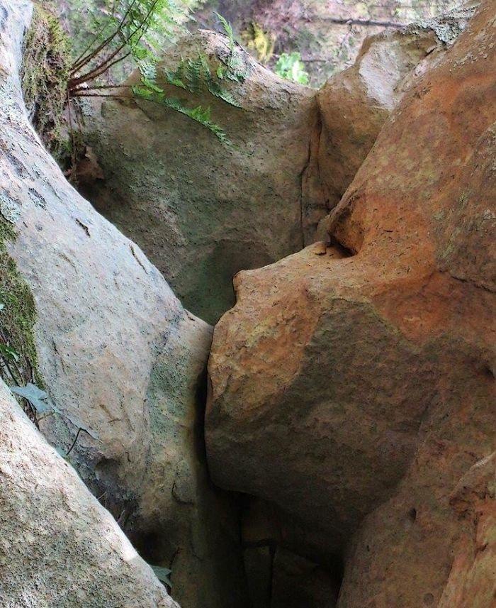 Hai tảng đá này trông giống như một người mẹ đang cho con bú