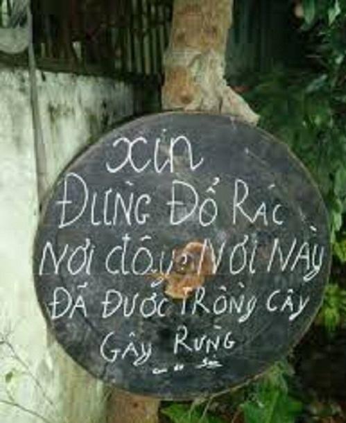 Xin đừng đổ rác nơi đã được trồng cây gây rừng.