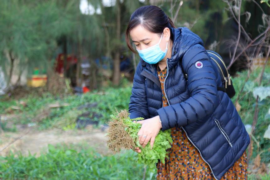 Chị Võ Thị Cẩm Giang, nhân viên FPT Software, cho biết thích nhất là việc được hái rau sạch. Dù đáng giá không nhiều nhưng mang lại cho chị cảm giác an tâm về chất lượng, tươi, xanh và đảm bảo sức khoẻ.