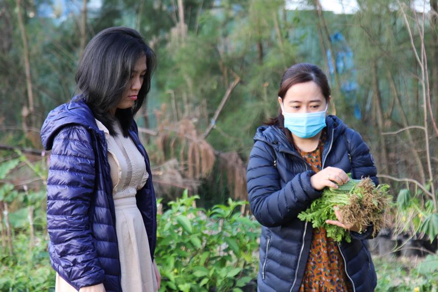"""Chị Nguyễn Phương Hà, nhân viên FPT Software Đà Nẵng, rất bất ngờ khi biết tại F-Complex có một vườn rau xanh, đẹp như vậy. """"Đúng là mình đi qua khu vực này suốt nhưng không để ý. Nhìn vườn rau thích thật"""", chị nói."""