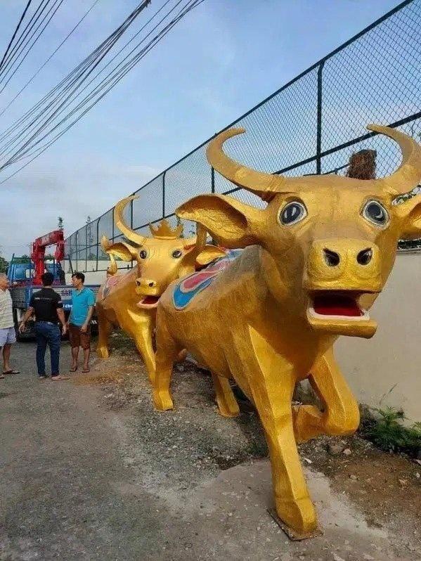 Biểu cảm giống như bị bế đi cách ly của 2 'linh vật' trâu vàng Tân Sửu ở Long An.