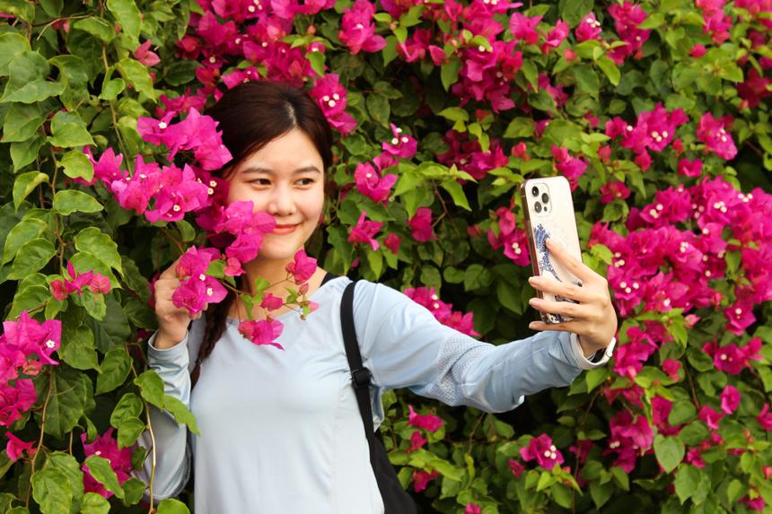 """Được các đồng nghiệp rủ rê liên tục, chị Hồ Cẩm Hằng cũng quyết định tham gia trải nghiệm, thử sức bản thân ở cự ly 5km. Chị vừa chạy vừa tranh thủ chụp ảnh để """"khoe"""" trên trang cá nhân. """"Ở Sơn Trà, bạn có 1001 nơi để chụp ảnh siêu đẹp"""", Hằng nói."""
