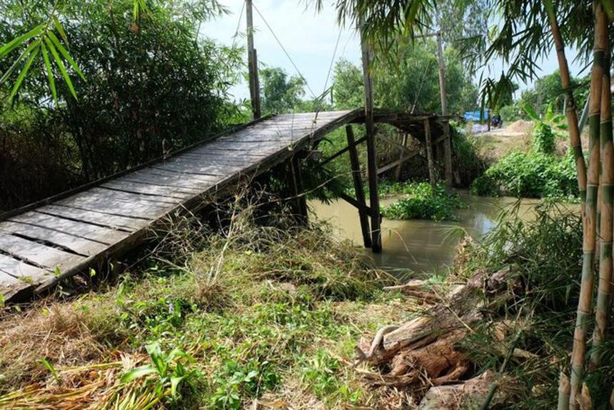 Tính tới nay, chương trình Nâng bước em tới trường đã khởi công 129 cây cầu và hoàn thành 118 cây cầu tại Đồng Tháp, An Giang và Cần Thơ, nhằm nâng cao đời sống, phát triển hạ tầng giao thông, kinh tế địa phương.